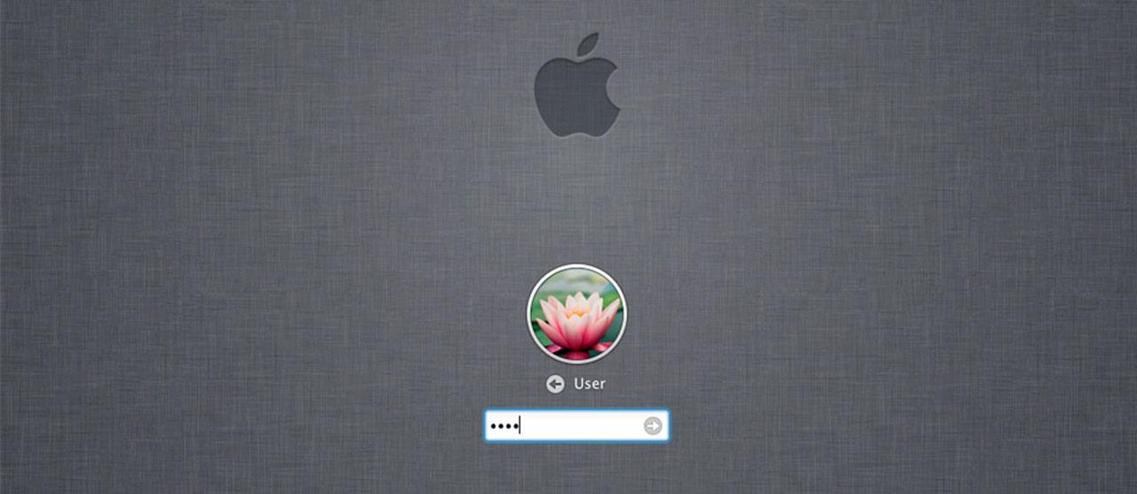 окно ввода пароля os x